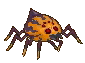 sand%20spider.png