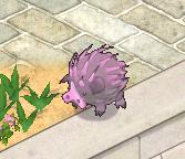 Spikey%20Warthog.png